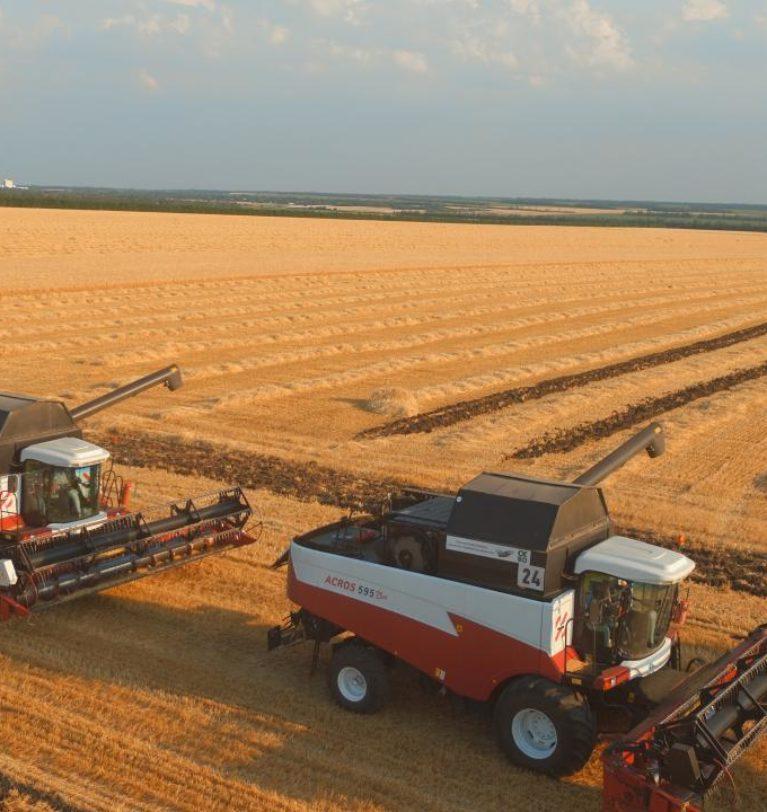 СЗАО СКВО: в планах предприятия продолжать наращивать объемы производства мясной и молочной продукции.